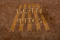 027 Cathédrale Nanterre - Béatitudes - Beati mites Détail 1